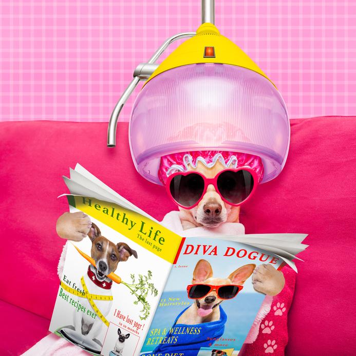 Warum Kundenmagazine so sinnvoll sind